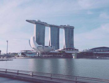 シンガポール研修報告⑥